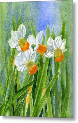 Orange Daffodils With Background Metal Print by Sharon Freeman