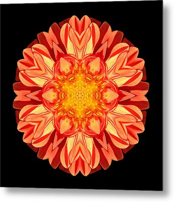 Orange Dahlia Flower Mandala Metal Print by David J Bookbinder