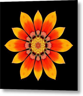 Orange Gazania I Flower Mandala Metal Print by David J Bookbinder