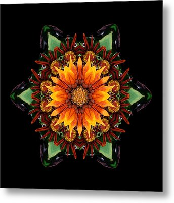 Orange Gazania IIi Flower Mandala Metal Print by David J Bookbinder