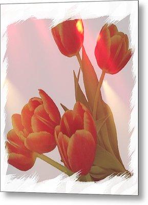 Orange Light Metal Print by Debra  Miller
