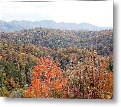 Orange Mountain Range Metal Print by Regina McLeroy