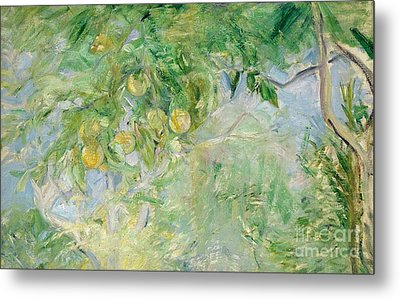 Orange Tree Branches Metal Print by Berthe Morisot