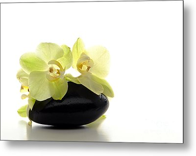 Orchid Flowers On Polished Stone Metal Print by Olivier Le Queinec