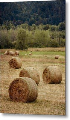 Oregon Hay Bales Metal Print by Carol Leigh