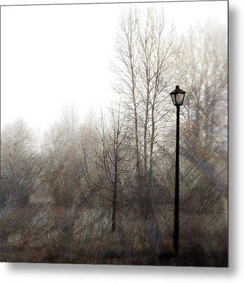 Oregon Winter Metal Print by Carol Leigh