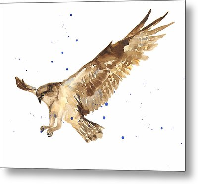 Osprey Painting Metal Print by Alison Fennell