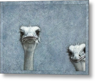 Ostriches Metal Print by James W Johnson