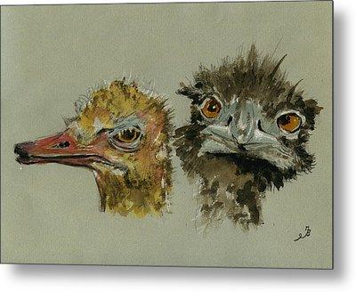 Ostrichs Head Study Metal Print by Juan  Bosco