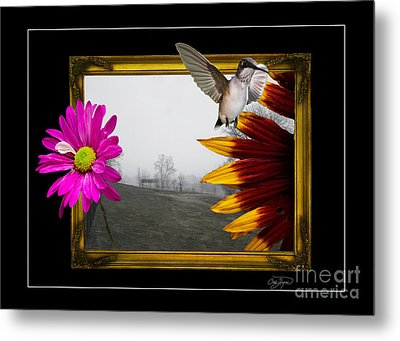 Outside The Box Metal Print by Cris Hayes