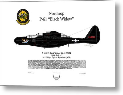 P-61b Black Widow Metal Print by Arthur Eggers