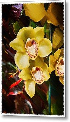 Painted Orchids Metal Print by John Haldane