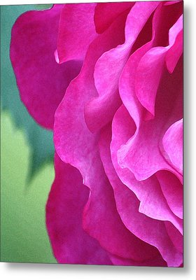 Painted Rose Metal Print by  The Art Of Marilyn Ridoutt-Greene