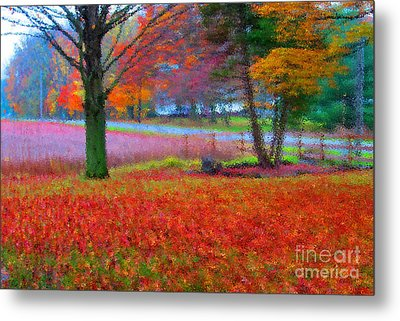 Painting Like Frontyard In Autumn Metal Print by Tina M Wenger