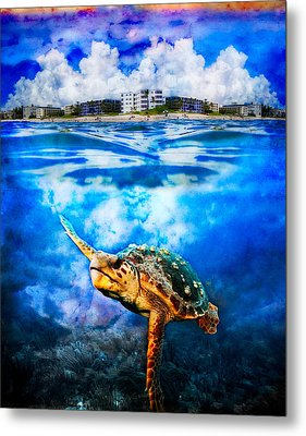 Palm Beach Under And Over Metal Print by Debra and Dave Vanderlaan