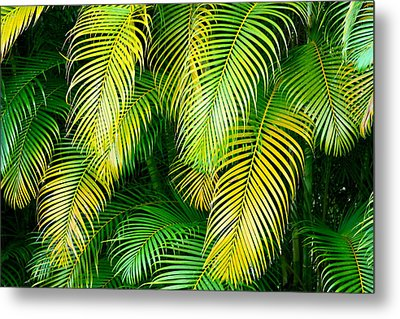 Palm Leaves In Green And Gold Metal Print by Karon Melillo DeVega