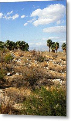 Palm Springs Indian Canyons View  Metal Print by Ben and Raisa Gertsberg