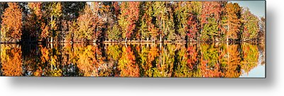 Panorama Of Fall Colors At Martin Dies Junior State Park - Jasper Piney Woods East Texas Metal Print by Silvio Ligutti