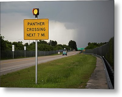 Panther Warning Sign Metal Print by Jim West