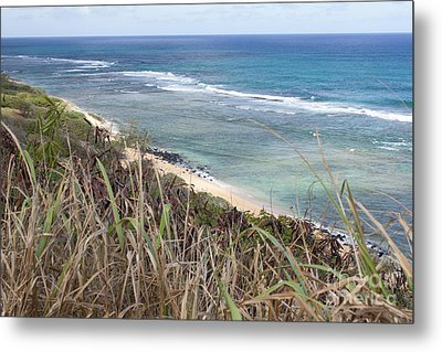 Paradise Overlook Metal Print by Suzanne Luft