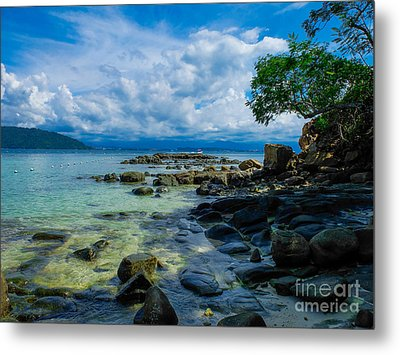 Paradise Metal Print by Will Cardoso