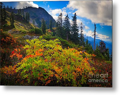 Park Butte Fall Color Metal Print by Inge Johnsson