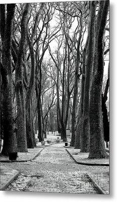 Park Path Metal Print by John Rizzuto