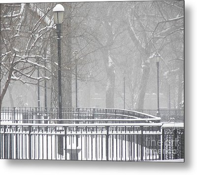 Park Snow Metal Print by James Dolan