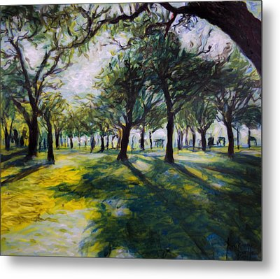 Park Trees Metal Print by Ron Richard Baviello