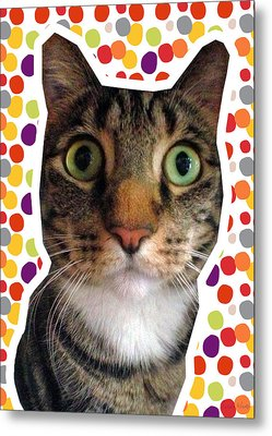 Party Animal- Cat With Confetti Metal Print by Linda Woods