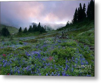 Pastel Mountain Dawn Metal Print by Mike Dawson
