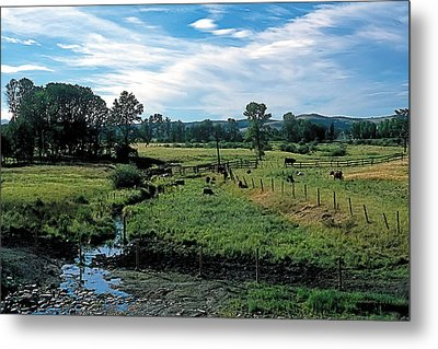 Pastoral 2 Metal Print by Terry Reynoldson