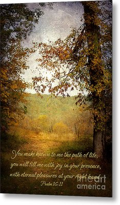 Path Of Life Metal Print by Lena Auxier