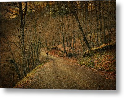 Path Metal Print by Taylan Soyturk