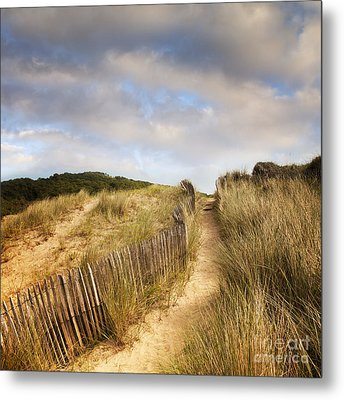 Path Through Dunes Metal Print by Colin and Linda McKie