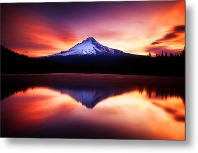 Peaceful Morning On The Lake Metal Print by Darren  White