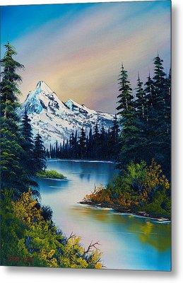 Tranquil Reflections Metal Print by C Steele
