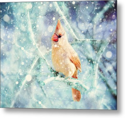 Peaches In The Snow Metal Print by Amy Tyler