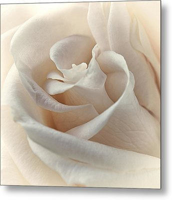 Peaches N Cream Metal Print by Darlene Kwiatkowski