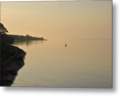 Peachy Morning Metal Print by Michele Kaiser
