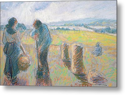 Peasants In The Fields Metal Print by Camille Pissarro