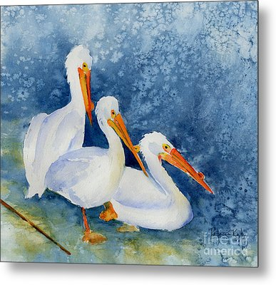 Pelicans At The Weir Metal Print by Pat Katz