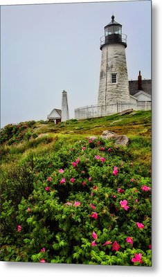 Pemaquid Point Metal Print by Karol Livote
