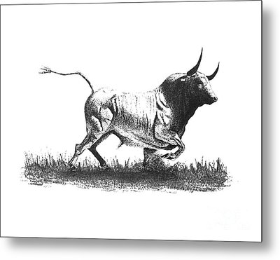 Pen And Ink Drawing Of Bull In Black And White Metal Print by Mario Perez