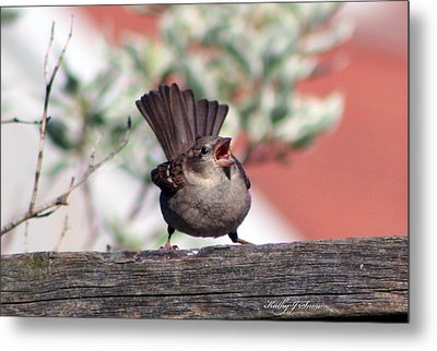 Perfect Pitch And Poise Metal Print by Kathy J Snow