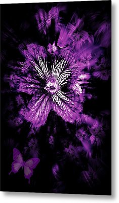 Petals From The Purple Metal Print by Amanda Eberly-Kudamik