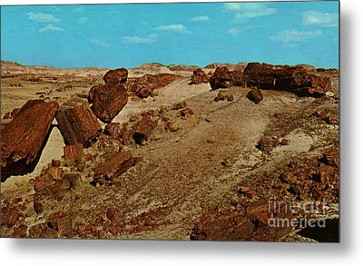 Petrified Forest National Park Metal Print by Ruth  Housley