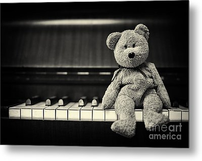 Piano Bear Metal Print by Tim Gainey