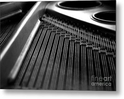 Piano Strings Metal Print by Tim Hester