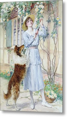 Picking Roses Metal Print by William Henry Margetson